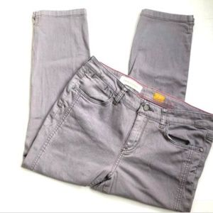 Pilcro and the Letterpress 30P Stet Fit Gray Jeans